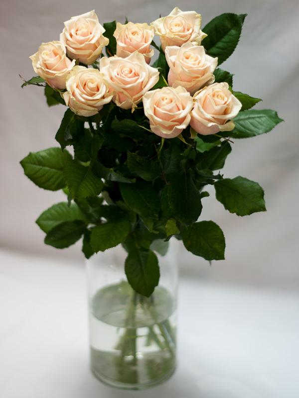 Роза Таллея