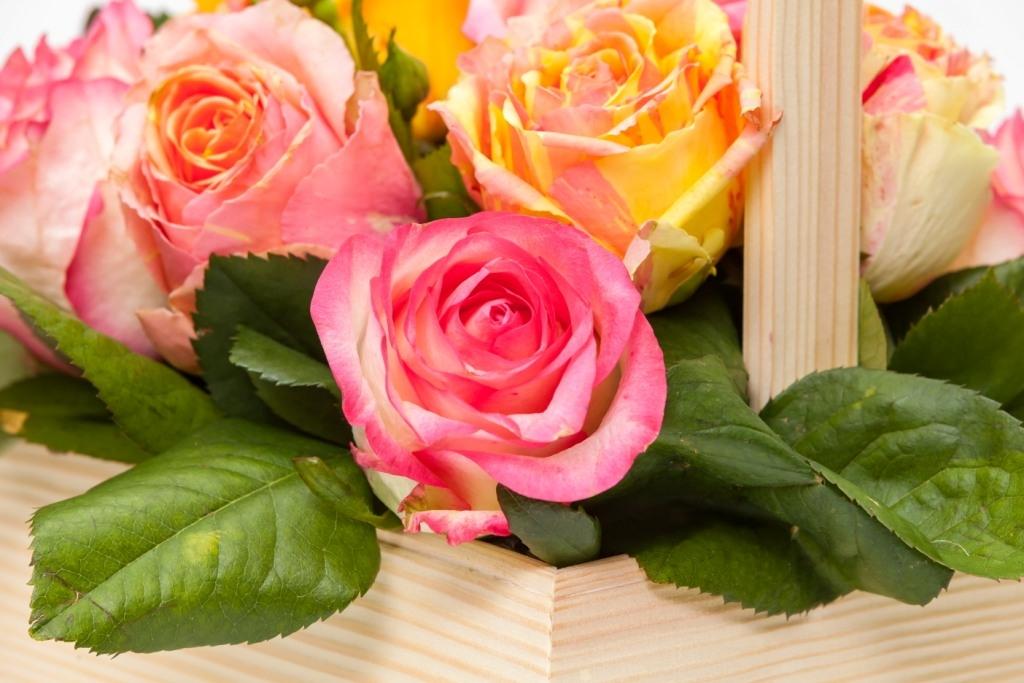 Ящичек с розами