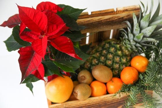 Пуансеттия с фруктами