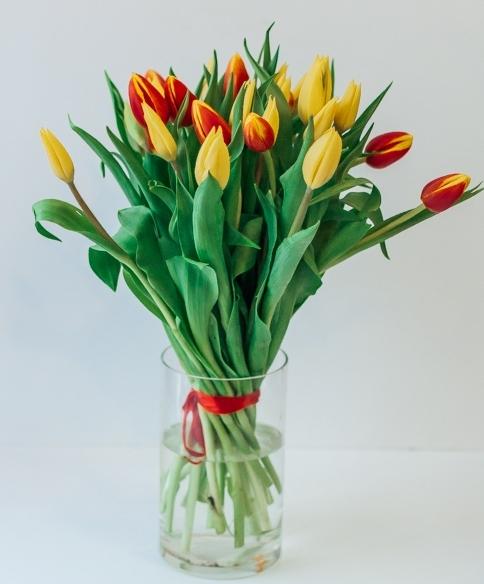 Красно-желтый микс тюльпанов