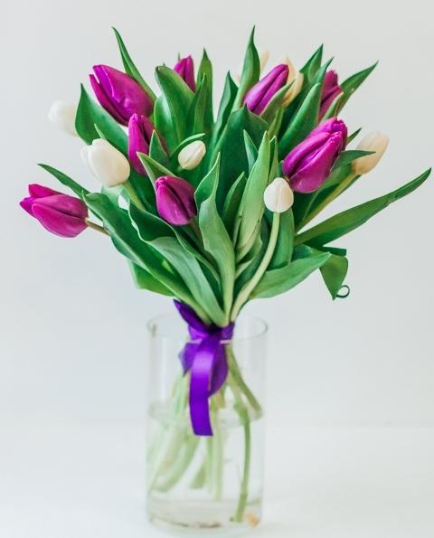Бело-фиолетовый микс тюльпанов