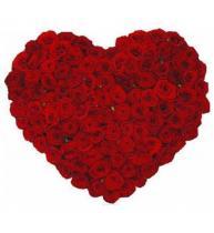 Сердце из 101 розы