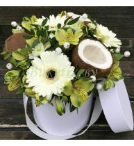 Коробочка с кокосом